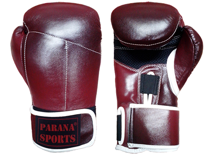 TOKUSHU BOXING GLOVES