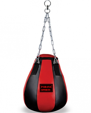 Maize Training Bag